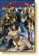 Galapagos - A Natural History Guide