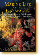 Book Cover of Marine Life of the Galapagos - 978-962-217-767-3